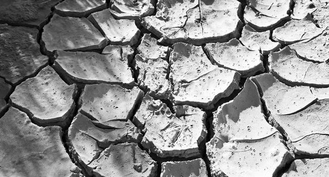 Drought, April 2009 by Bert Kaufmann