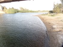 The Colorado River, Yuma