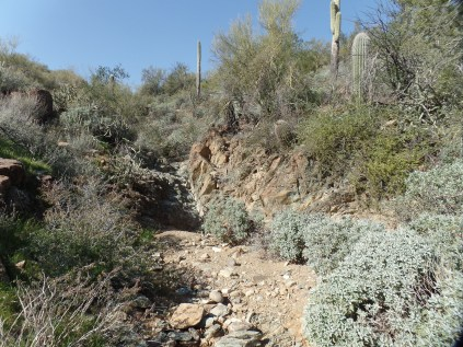 K-Mine Trail, at dry tributary of Agua Fria
