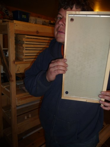 Hive inserts with beeswax liner