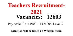 12603 BEd Teacher job opportunities