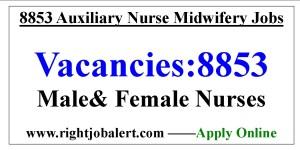 8853 Auxiliary Nurse Midwifery Jobs