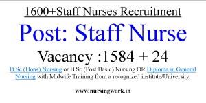 1600 Diploma Nursing and B.Sc Nursing Job Vacancies