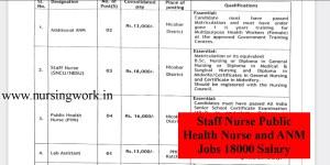 Staff Nurse Public Health Nurse and ANM Jobs 18000 Salary
