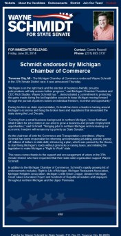 schmidt chamber endorsement copy