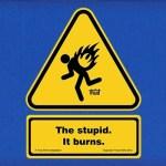 The-Stupid-It-Burns