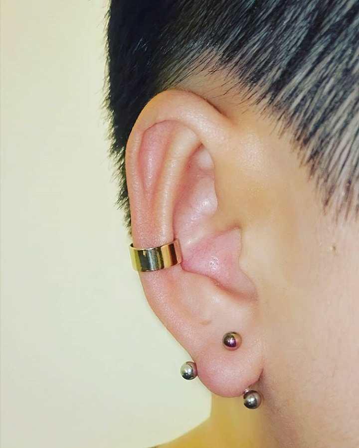 curved barbell transverse lobe