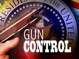 Gun-Control-Issue2