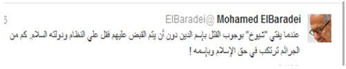Mohammed ElBaradei Twitter account fatwas could bring about Egypts collapse