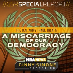 GSR UN Arms Trade Treaty