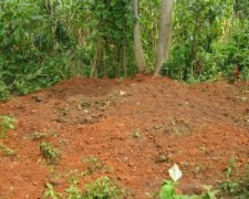 Grave-of-five-members-of-Nkom-family-in-Adu-Nigeria.-Morning-Star-News-photo-300x240