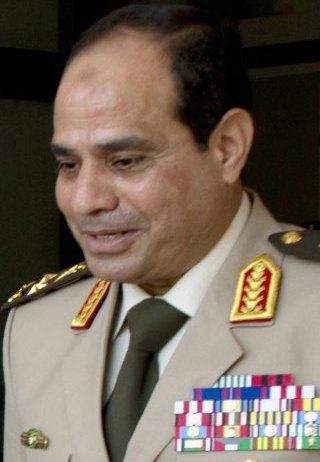 Abdel Fatah Saeed Al Sisy 2013 cropped