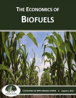 economics biofuels