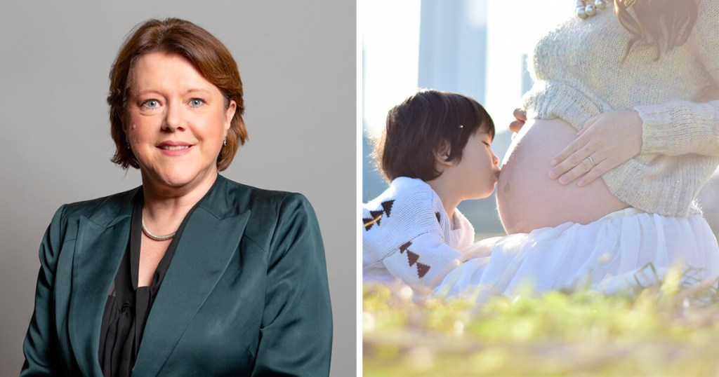 Former Government Minister proposes legislation protecting pregnant women and new mothers from redundancy