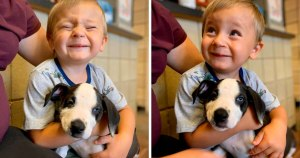 Boy with cleft lip adopts adorable rescue puppy with same condition