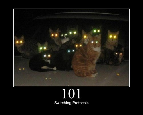 101 Switching Protocol- This means the requester has asked the server to switch protocols and the server is acknowledging that it will do so.