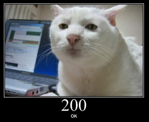 200 OK - Standard Response for Successful HTTP request. The actual response will depend on the request method used.