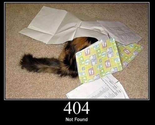 404 Not Found  The requested resource could not be found but may be available again in the future.