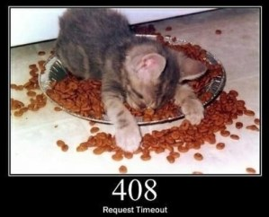 408 Request Timeout The server timed out waiting for the request.