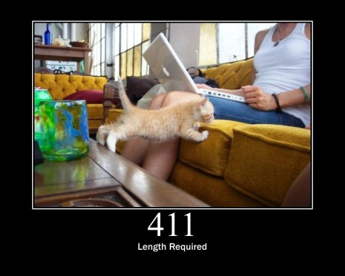 411 Length Required  The request did not specify the length of its content, which is required by the requested resource.