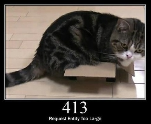 413 Request Entity too Large The request is larger than the server is willing or able to process.