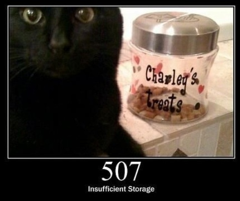 507 Insufficient Storage  The server is unable to store the representation needed to complete the request.
