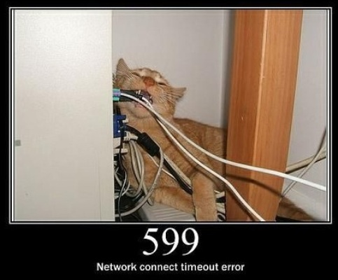 599  Network connect timeout error  This status code is not specified in any RFCs, but is used by Microsoft Corp.