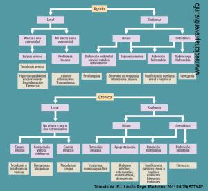 Diagrama de flujo para el diagnóstico del edema
