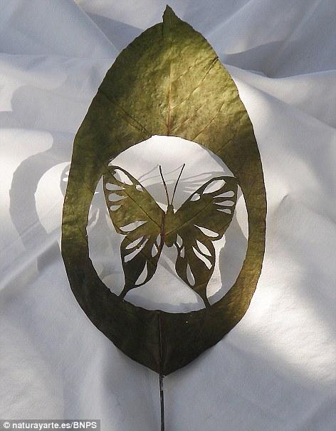 Art on leaves (4/4)