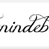 Venindebog #8 - Tinasting.com