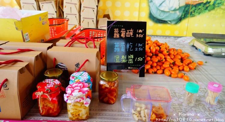 【遊記*高雄】 2016 河堤番茄園採果樂,橙蜜番茄超好吃~ ♥