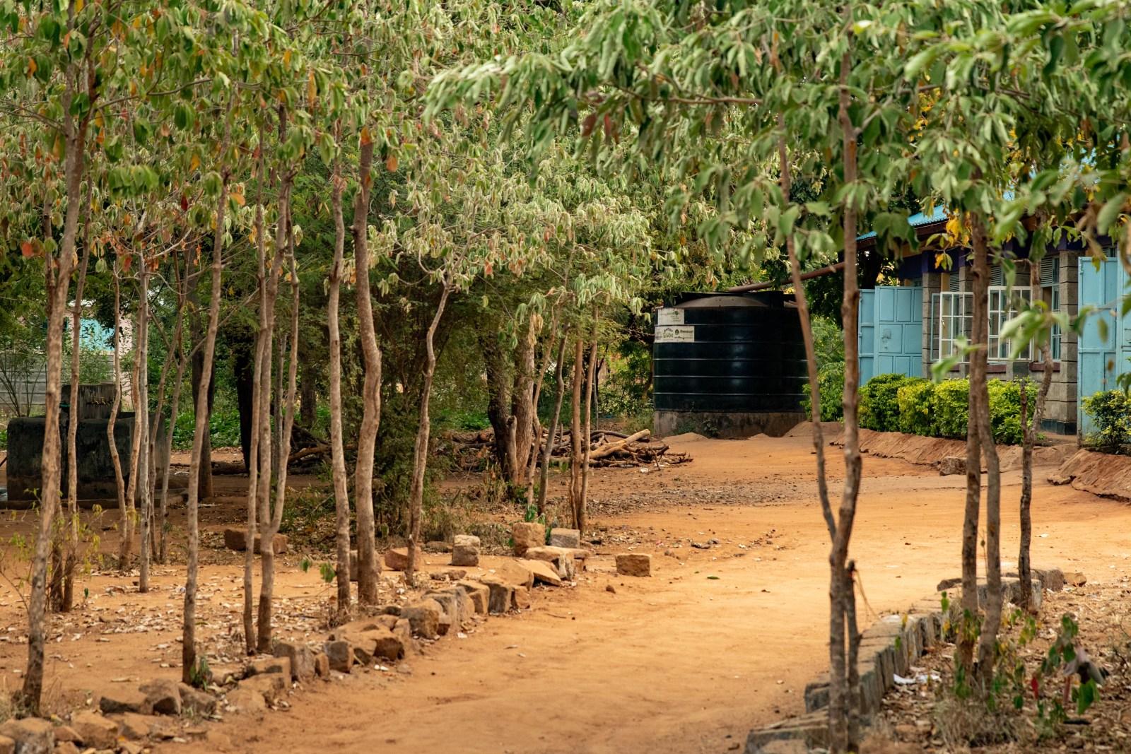 Allé med planterade träd som leder till matsalen med en stor sponsrad vattentank