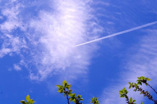 初夏の飛行機雲