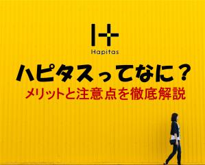 ハピタス記事バナー画像s