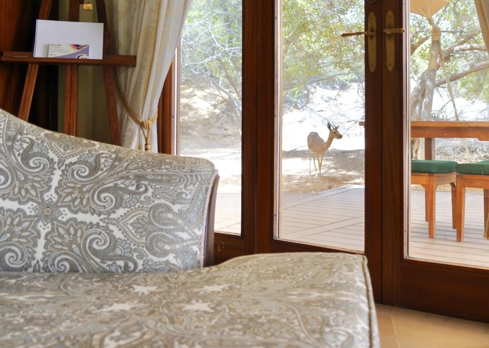 アルマハ・ア・ラグジュアリーコレクション・デザートリゾート&スパのベッドから見る砂漠