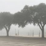 【オススメ】白い霧事件。