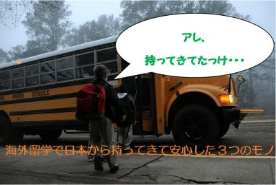 【留学準備】メイドインジャパン最高や!海外留学で日本から持ってきて安心した3つのモノ