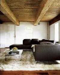 Minimalist Rustic Living Room