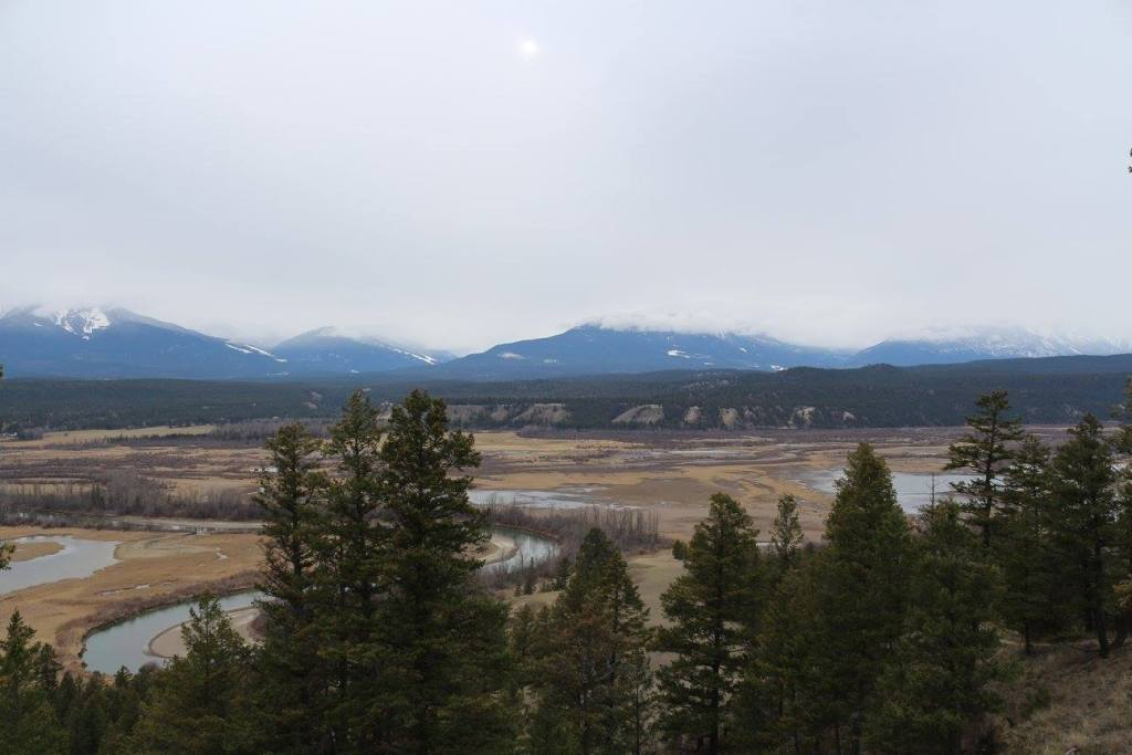 The Columbia Wetlands near Kootenay and Banff National Parks