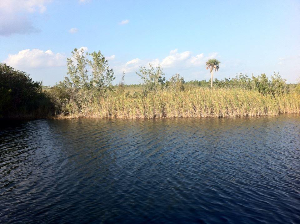 Evergaldes