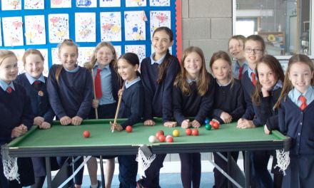 12 New Girls from Ballinabranna N.S. Carlow join RILSA Recently