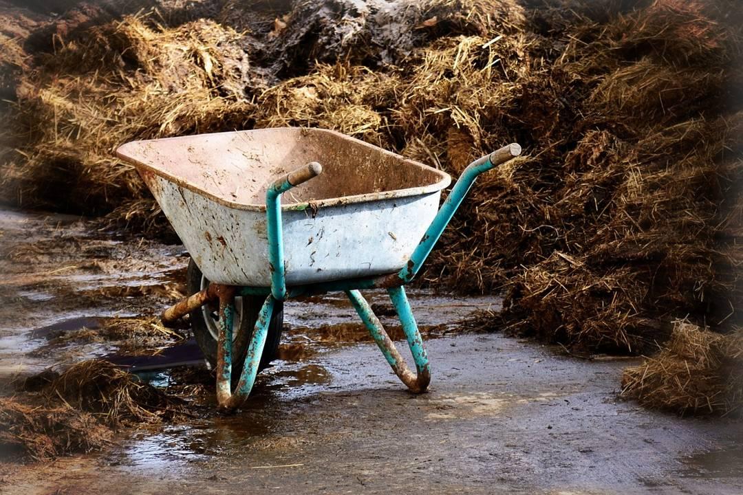 sampah organik menjadi kompos