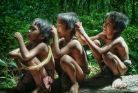 kehidupan suku anak dalam