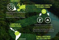 peran hutan melawan perubahan iklim