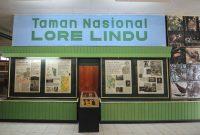 museum taman nasional lore lindu