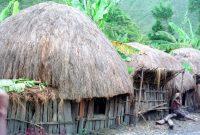 7 Rumah Adat Papua Keunikan Gambar Penjelasan Lengkap