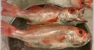 (魚) 海魚界的法拉利