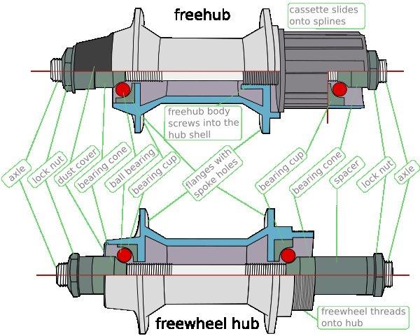 Freewheel vs freehub