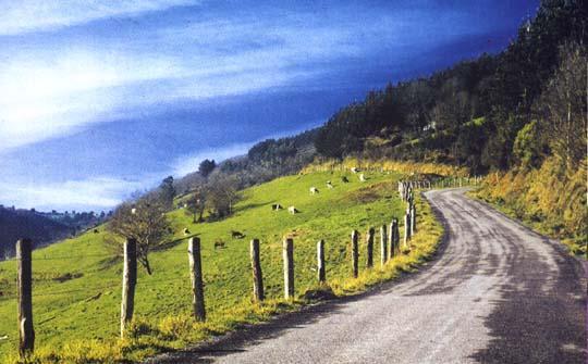 Camino Asturias