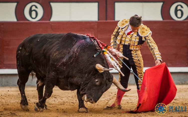 Faena Diego Urdiales Ventas